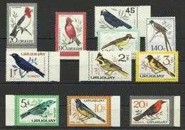 URUGUAY  1962/63  BIRDS  MNH - Unclassified