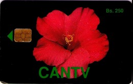 TARJETA TELEFONICA DE VENEZUELA. FLOR, CAYENA, 02.93, VE-CAN2-0008 (661) - Flores