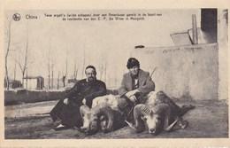 China, Twee Argalli's Door Een Amerikaan Geveld In De Buurt Van De Residentie Van Den E.P De Wilde (pk50652) - Chine