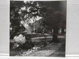Grivegnée. Clinique Des Bruyères, Anciennement Château De La Rousselière. Bois De Breux. 1935. 8.5x8.5 Cm - Lieux