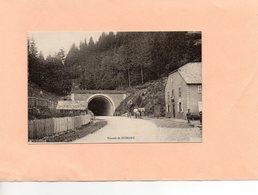 Carte Postale - Tunnel De BUSSANG - D88 - Bussang