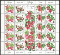 Serbia 2011 Flora, Red Fruits, Rubus Idaeus,Fragaria Vesca, Ribes Rubrum, Vaccinium Macrocarpon, Mini Sheet MNH - Serbia