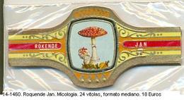 Vitolas Roquende Jan. Micología. FM. Ref. 14-1460 - Vitolas (Anillas De Puros)