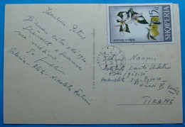 1969 Albania Happy New Year Postcard Sent From Librazhd To Tirana, Seal: LIBRAZHD Stamp 15q. LIME FLOWER - Albania