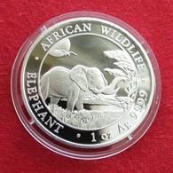 Somalia 100 Shilling 2019 Elephant - Somalia