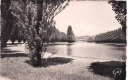 92 - Sceaux  - Le Grand Canal - Sceaux