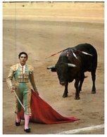 (ORL 864) Corrida - Bull - Taureau - Corrida
