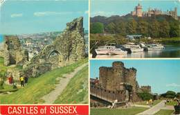 D1382 Castles Of Sussex - Other