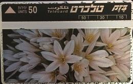 Paco \ ISRAELE \ BZ-053 \ Jerusalem Sitvanit \ Usata - Israele