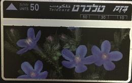 Paco \ ISRAELE \ BZ-055 \ Lashon Par Smura \ Usata - Israele