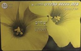 Paco \ ISRAELE \ BZ-211 \ Yellow \ Usata - Israele