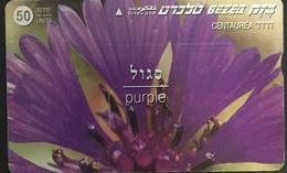 Paco \ ISRAELE \ BZ-210 \ Purple \ Usata - Israele