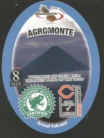 # PINEAPPLE AGROMONTE Size 8 Fruit Tag Balise Etiqueta Anhanger Costa Rica Ananas Pina Volcan Arenal Volcano - Fruits & Vegetables