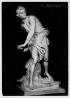 ROMA   MUSEO    VILLA  BORGHESE     DAVID  (BERNINI)           (VIAGGIATA) - Sculture