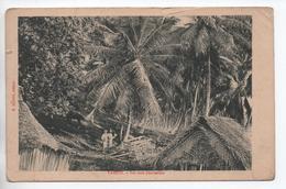 TAHITI - SUR UNE PLANTATION - Tahiti
