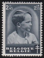Belgie   .    OBP  .   446       .  **    .    Postfris ZONDER Charnier  .  /   .  Neuf SANS  Charniere - Belgique