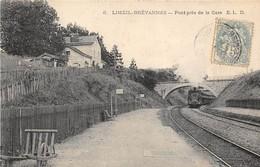 40 CP(SNCF:Limeil-Brév+Bouay Les T+Les Laumes+Viaduc+2 LOCOS(recto-verso)CP-Photo( Vire)Houblons(Très Rare)+divers N°72 - Cartes Postales