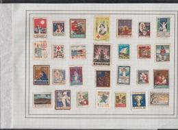 LOTE DE 28 VIÑETAS TEMA PRO TUBERCULOSOS. - Stamps