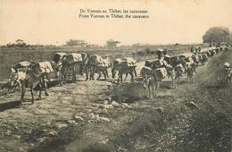 ASIE CHINE YUNNAN THIBET LES CARAVANES DU YUNNAN AU THIBET 1924    VOIR IMAGES - China