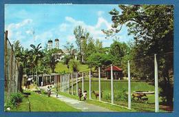 JOHORE BAHRU ZOO, JOHORE MALAYSIA SULTAN MOSQUE 1973 - Malesia