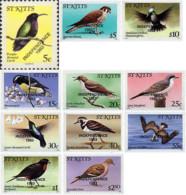 Ref. 36977 * NEW *  - ST. KITTS . 1983. BIRDS. AVES - St.Kitts And Nevis ( 1983-...)