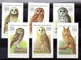 Serie De Polonia N ºYvert 3099/04 (**) AVES (BIRDS) - 1944-.... République