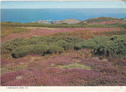 Postcard - L'eperquerie, Sark, C.I. - Card No. S.5  - Posted 01-07-1982 - VG - Cartes Postales