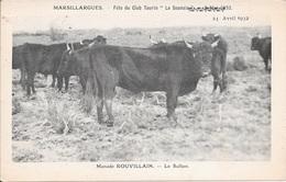 """MARSILLARGUES - Fête Du Club Taurin """"La Sounaïa"""" - Manade ROUVILLAIN - Le Sultan - 2 Scans. - France"""