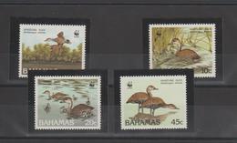 Bahamas 1988 Oiseaux 659-662 4 Val ** MMH - Bahamas (1973-...)