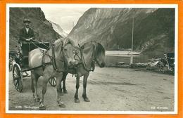 NORGE 028, * GUDVANGEN *  UNUSED - Norwegen