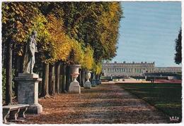 VERSAILLES - Le Tapis Vert Et Le Château - Versailles (Château)