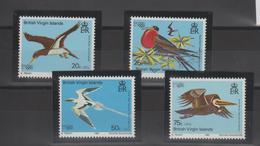Iles Vierges 1980 Oiseaux 392-95 4 Val ** MMH - Iles Vièrges Britanniques