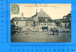 MONTBARD - Une Ferme Bourguignonne, Aux Bordes - Montbard
