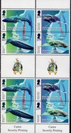 Falkland Islands - South Georgia - 2018 - Migratory Species - Mint Gutter Pairs Set - South Georgia