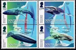 Falkland Islands - South Georgia - 2018 - Migratory Species - Mint Stamp Set - South Georgia