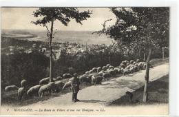 1 Cpa Houlgate - La Route De Villers - Berger - Houlgate