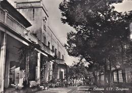 CARTOLINA - POSTCARD - RIMINI - RICCIONE - COLONIA CIF BERGAMO - Rimini