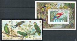 Belize              686/689  **   +  Bloc 54 **  Oiseaux - Belize (1973-...)