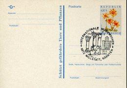 40019 Austria  Special Postmar 1991 Millstatt Karnten,  Internationale  Musikwochem  Archeology - Archaeology