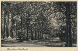 Mastbosch - Ginneken [AA16-375 - Netherlands