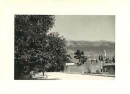 161118A - PHOTO 1958 BOSNIE HERZEGOINE - TREBINJE - Bosnia And Herzegovina