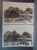 Brunoy Piscine Concours De Plongeon Mademoiselle Patricia Vanault Le 29 Mai 1966 2 Photos - Sports