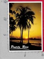 CARTOLINA VG STATI UNITI PUERTO RICO - TRAMONTO SUL MARE - SUNSET - 10 X 15 - ANN. 1996 SAN JUAN - Puerto Rico