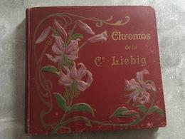 ALBUM VIDE CHROMOS LIEBIB - 40 PAGES - Vieux Papiers