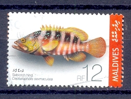 MALDIVES .  (CWER 252) - Maldives (1965-...)