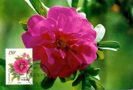 CHINE. N°3510 De 1997 Sur Carte Maximum. Rose. - Roses