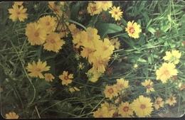 Paco \ ROMANIA \ RO-ROM-0362A \ Flowers 3 \ Usata - Romania