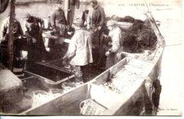 N°66310 -cpa Le Havre -l'harengaison- - Fishing