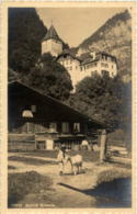 Schloss Wimmis - Ziege Goat - BE Berne