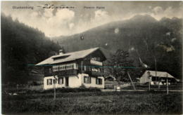Blankenburg - Pension Alpina - BE Berne